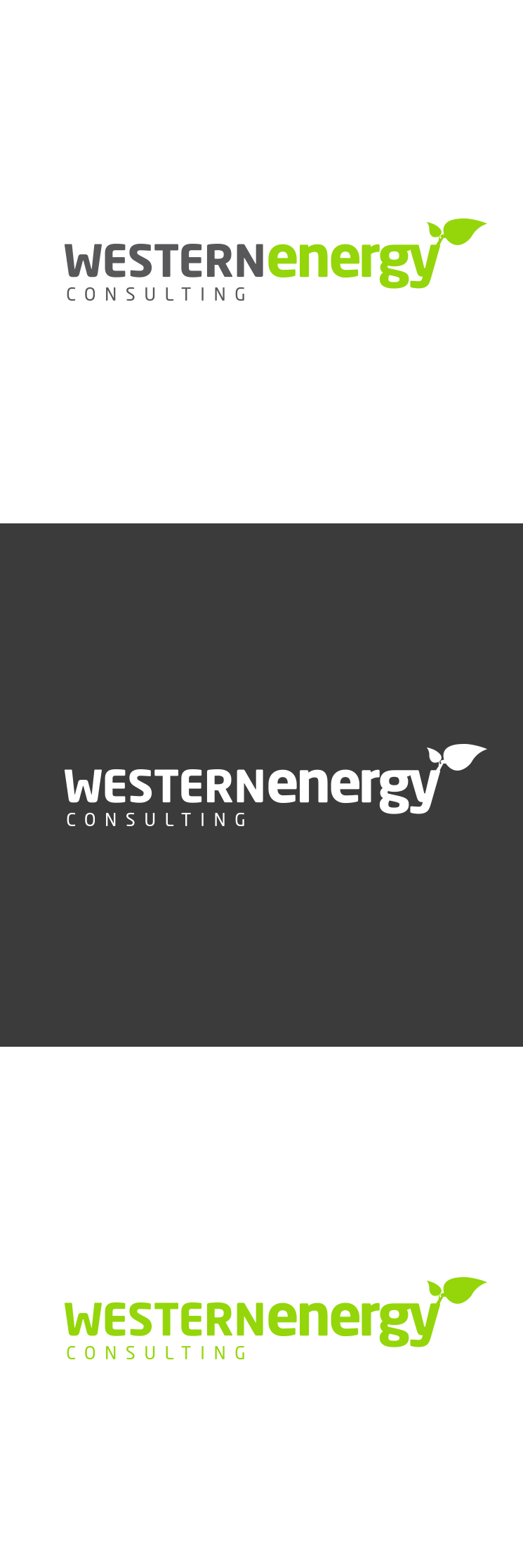 Western Energy Consulting